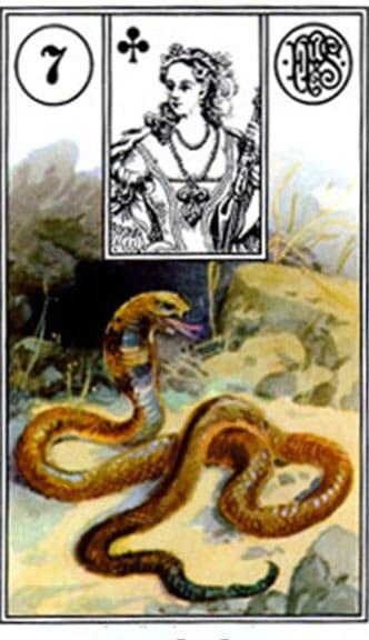 Carta zingara 7: Il serpente. Tarocchi della Zingara