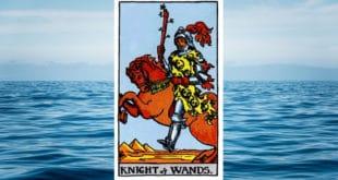 Carta dei Tarocchi Cavaliere di Bastoni - Arcani Minori - Significato
