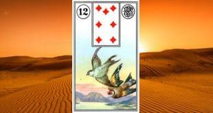Carta zingara 12: Gli uccelli. Scoprire i significati della carta