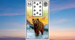 Carta Gitana 15 El Oso Tarot Gitano Descubre los significados de esta tarjeta