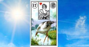 Carta zingara 17: la cicogna Scopri i significati della carta