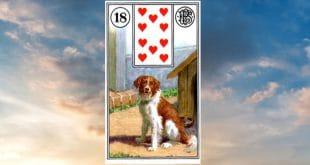 Carta zingara 18: Il cane. Scoprire i significati della carta