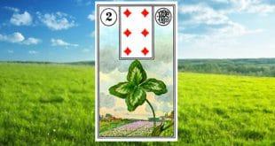 Carta zingara 2: Il Quadrifoglio. Scoprire i significati della carta
