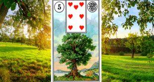 Carta zingara 5: L'albero del Tarocchi della Zingara. Scopri i significati di questa carta.