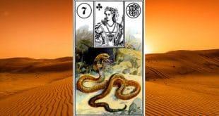 Carta zingara 7: il serpente. Scoprire i significati della carta