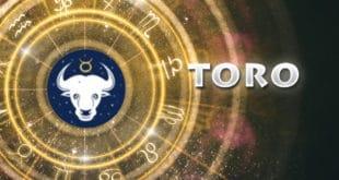 Caratteristiche del Segno Zodiacale Toro